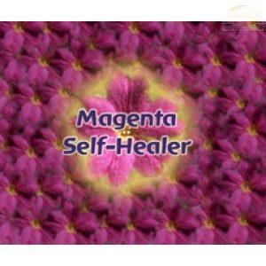 FES Flourish Spray, 30ml, Magenta Self-Heal
