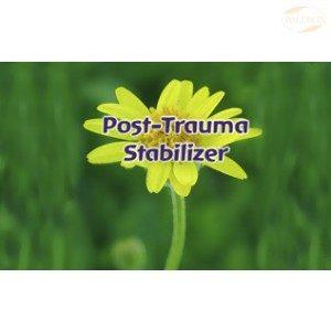 FES Flourish Spray, 30ml, Post-Trauma Stabilizer