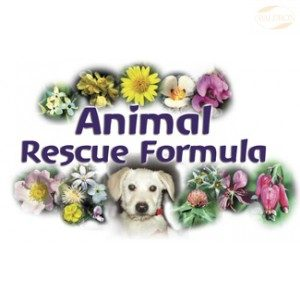 FES Flourish Spray, 30ml, Animal Resque