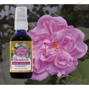 FES Season of the Soul Herbal Oils, 60ml Bottle, Benediction