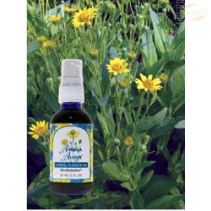 FES Season of the Soul Herbal Oils, 60ml, Arnica Alleve