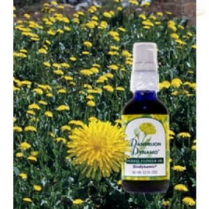 FES Season of the Soul Herbal Oils, 60ml, Dandelion