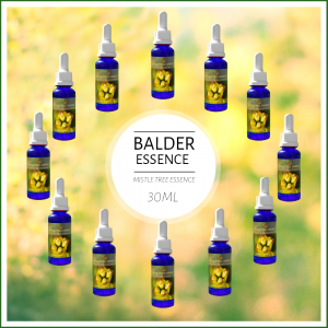 BALDRON MistleTreeEssences, Balder Set, 12x30ml