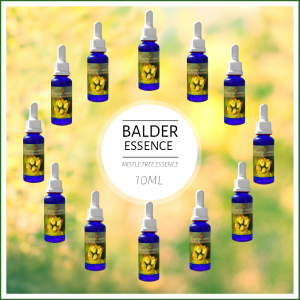 BALDRON MistleTreeEssences, Balder Set, 12x10ml