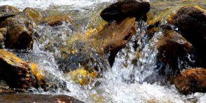 Wasserbelebung