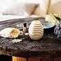 60875_nature_s_design_pinus_cembra_fragrance_pine_1